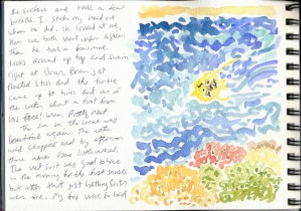 Maui Dec 2008 p21