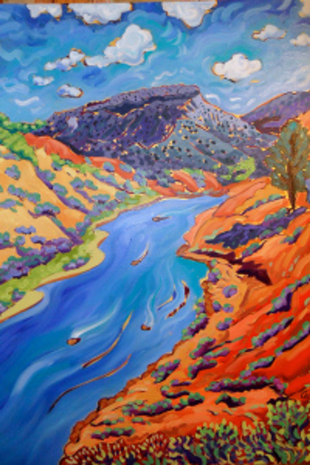 The Rio Grande heading to Taos by Cathy Carey