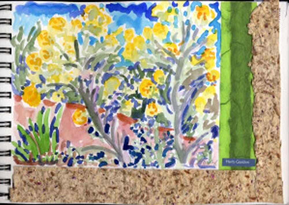 Huntington Garden 2009 - Herb Garden p 4