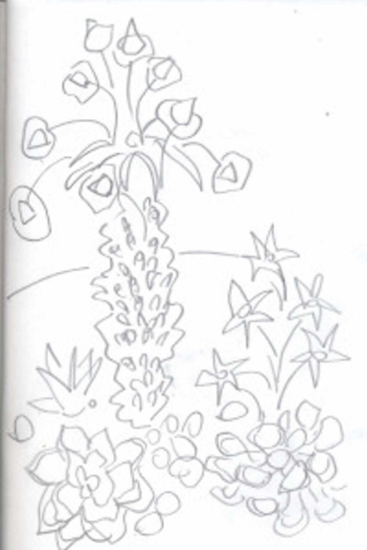 succulent garden p.19