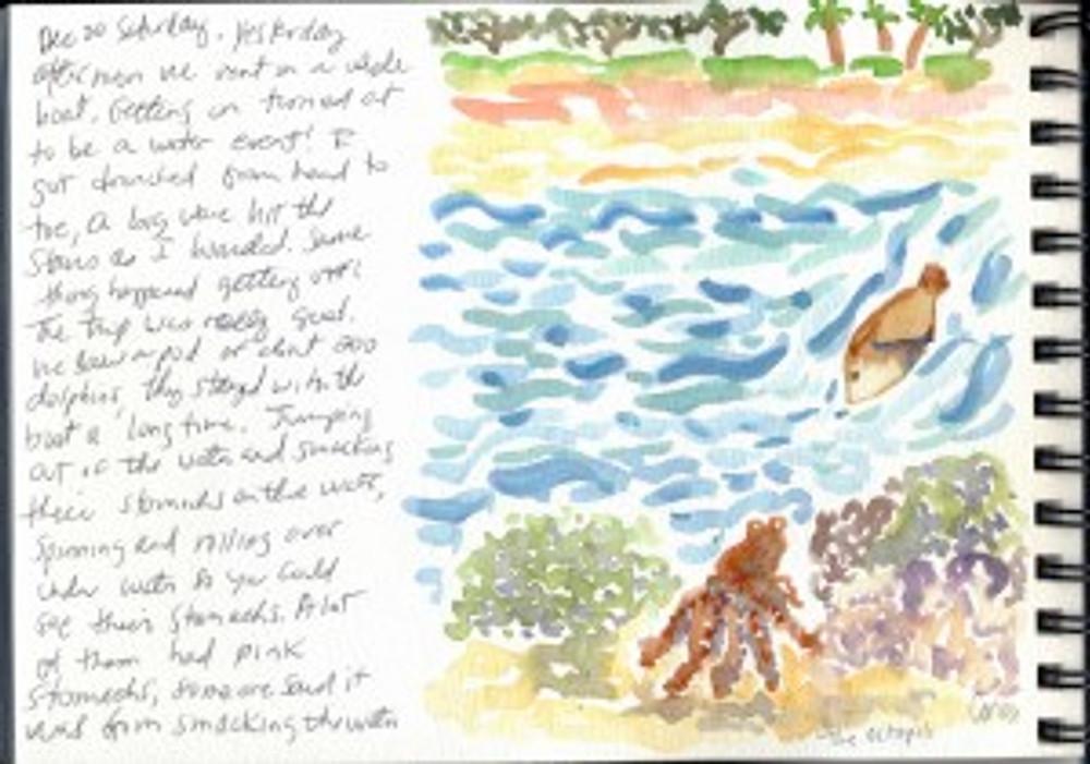 Maui Dec 2008 p31