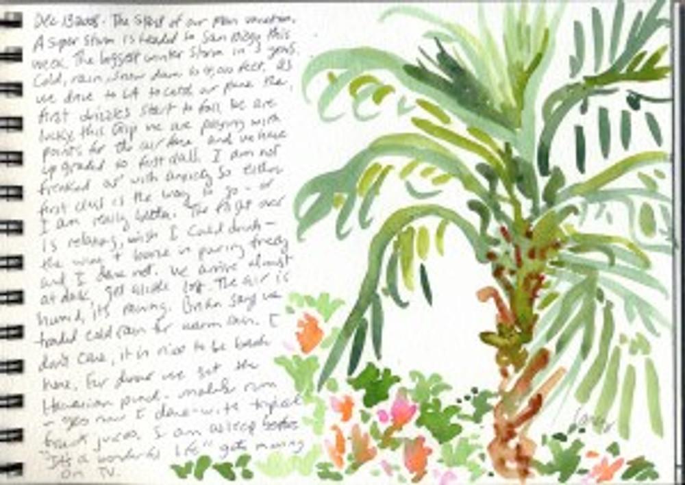 Maui Dec 2008 p4