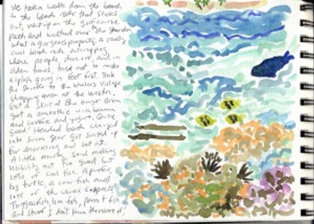 Maui Dec 2008 p7