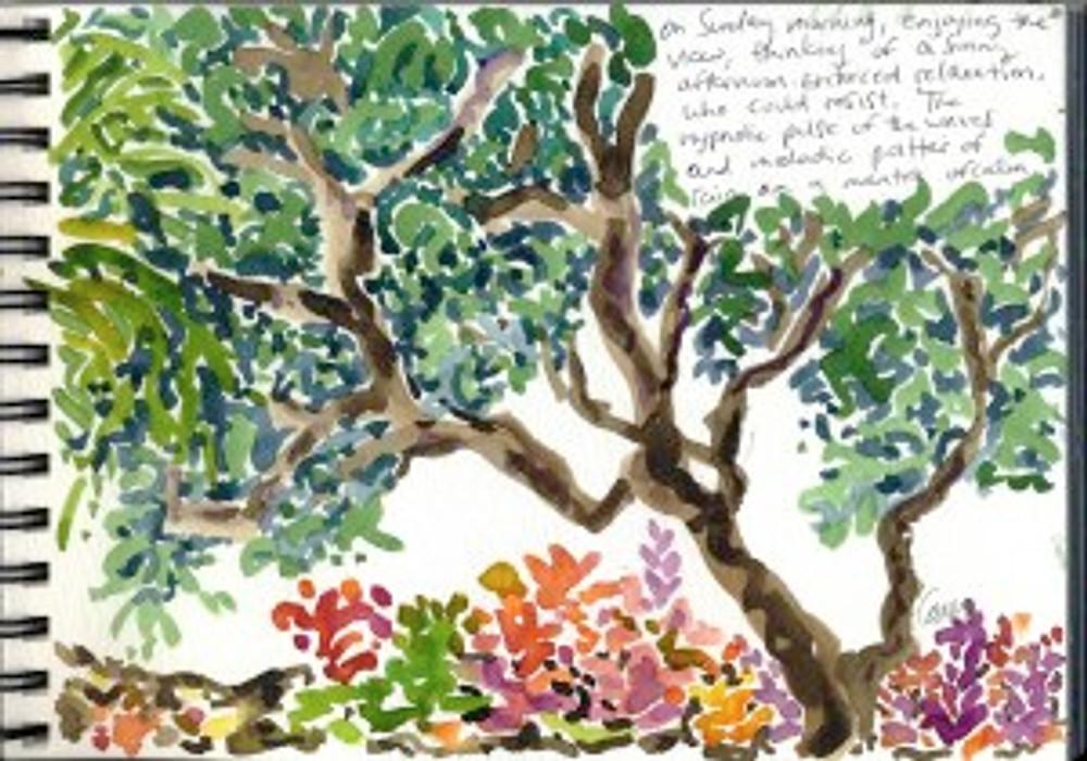 Maui Dec 2008 p6
