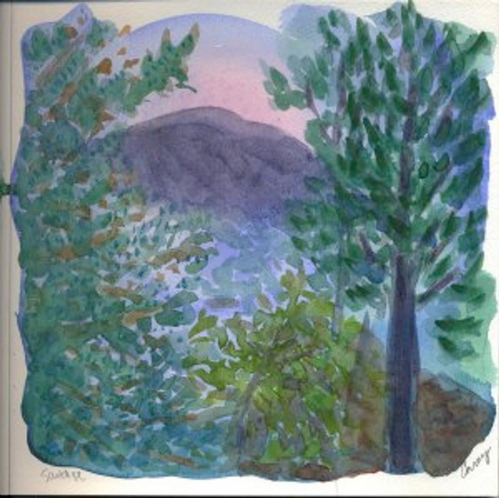 Santa Fe 2004/2005 p17