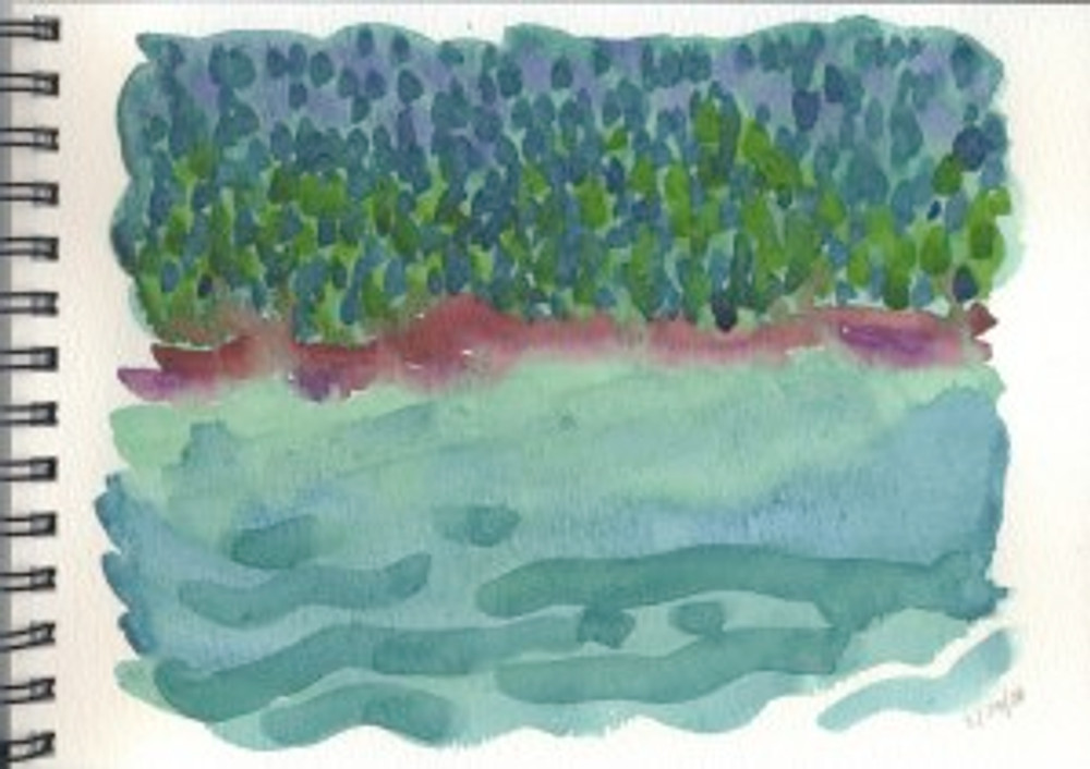 Alaska 2006 Sketchbook  - Admiralty Island 2