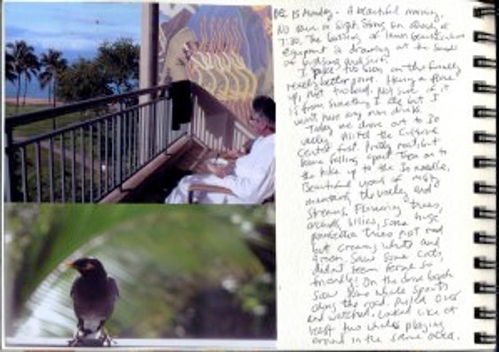Maui Dec 2008 p9