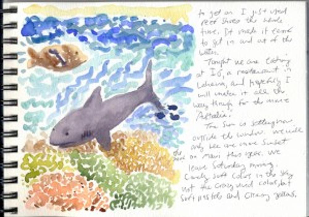 Maui Dec 2008 p22