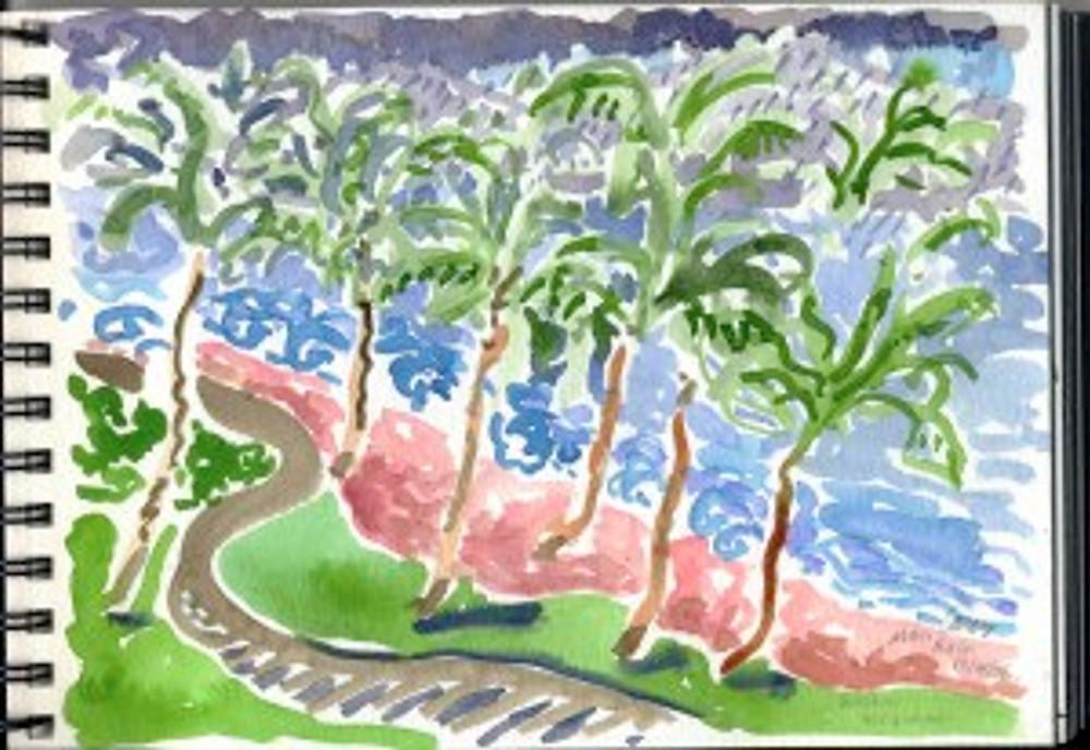 Maui Dec 2008 p2