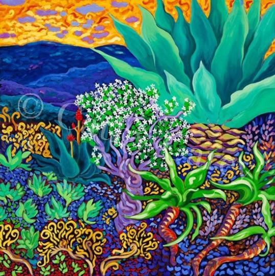 Do Succulents Dream of Oceans?