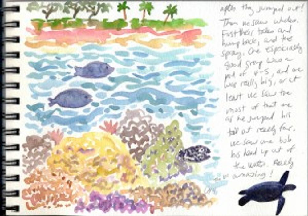 Maui Dec 2008 p32