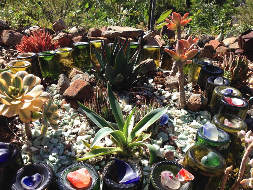 Succulent Garden made with wine bottles