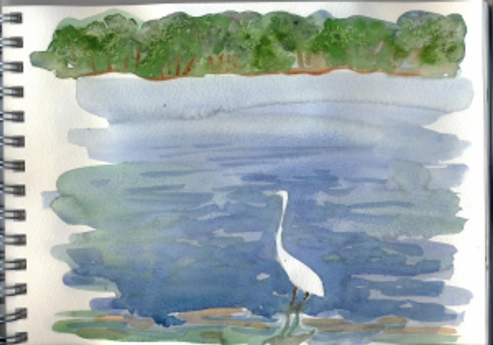 Georgia 2005 p7