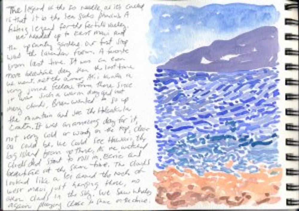 Maui Dec 2008 p15