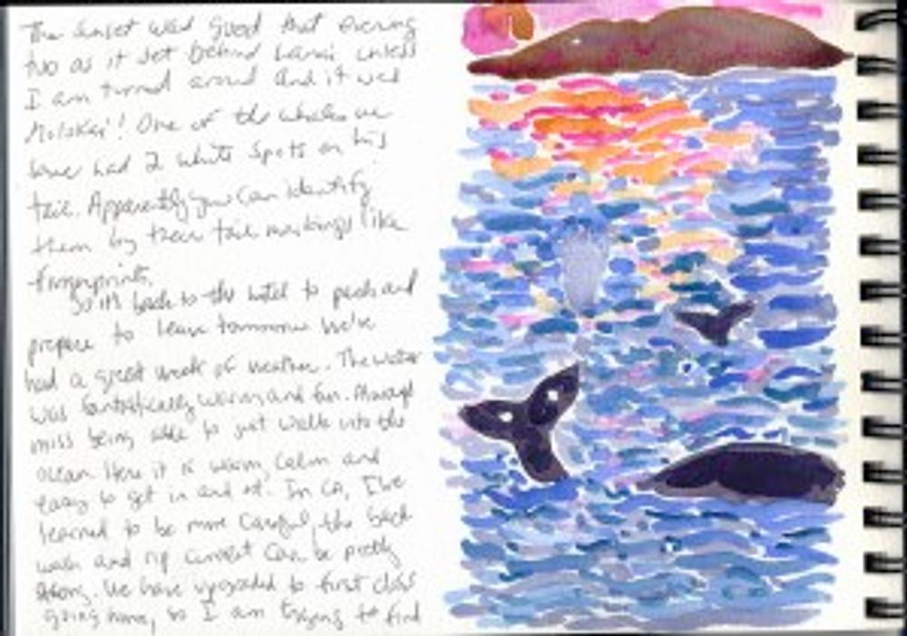 Maui Dec 2008 p33