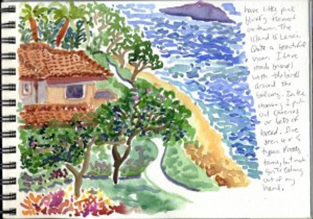 Maui 2008 page 30