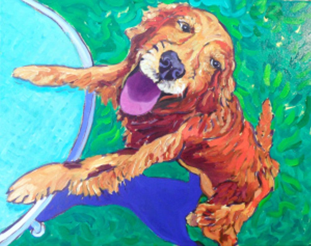 Kira the Golden by Cathy Carey