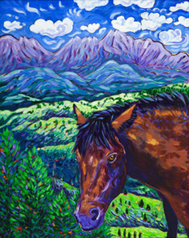 High Country: the Protector by Cathy Carey ©2014