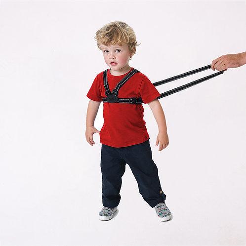 Harness & Reins