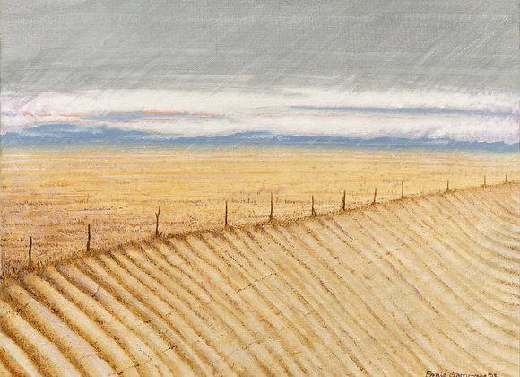 Winter on 290 - Giclée Print on Canvas