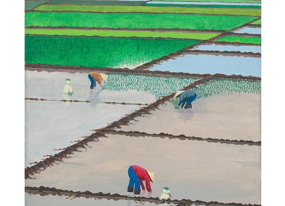 Rice - Giclée Print on Canvas
