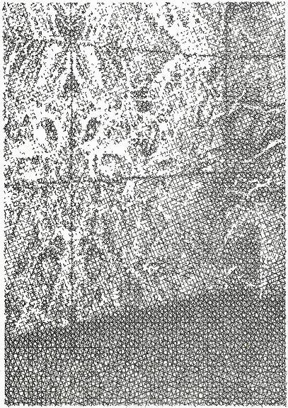 Draw14.jpg