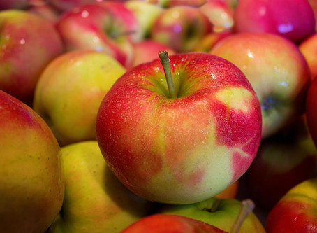 The Case of Eve and that Doggone Apple