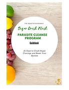 Sugar Crush Cleanse Program Workbook.png