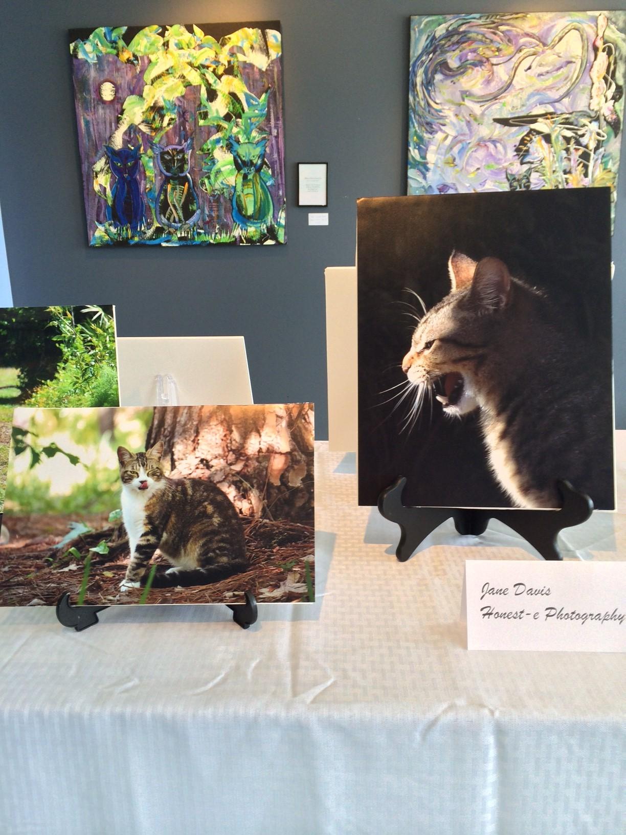 exhibit photo 1.JPG