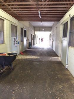 barn today.JPG