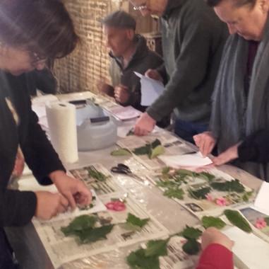 atelier découverte de l'estampe dans l'Avesnois (Nord)