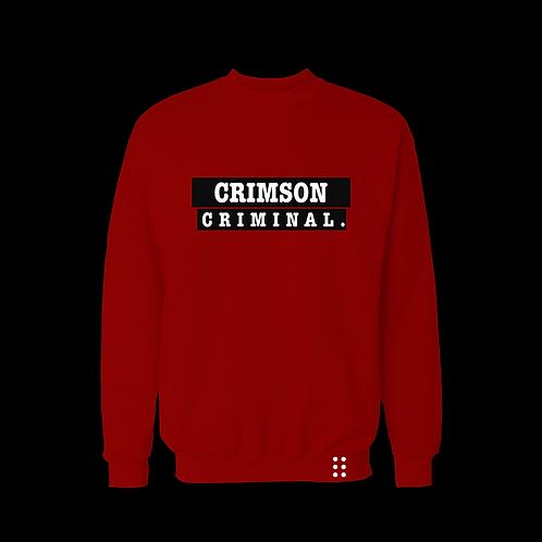 Primary Somethings sweatshirt