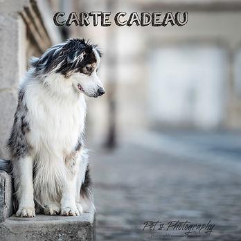 CARTE CADEAU RECTO-HD.jpg
