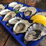 Shucked Kangaroo Island Native Angasi oysters