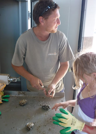 Kangaroo Island Oyster Farmer, Ken Rowe with daughter Jessica Rowe shucking oysters