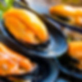 South Australian Live Blacklip Mussels