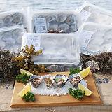 Kangaroo Island Snaptop Oysters