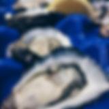 Shucked Kangaroo Island pacific oysters
