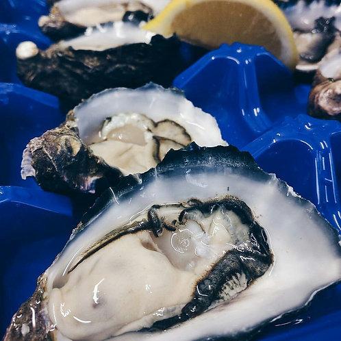 Freshly Shucked (open) Kangaroo Island Premium Oysters