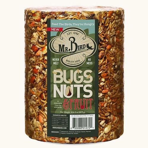 Bugs, Nuts, & Fruit Large Cylinder