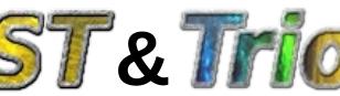 TRUST & TrioCFD