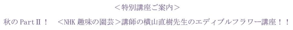 キャプチャ  yokoyama.PNG
