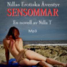 cover-Sensommar-ljud.jpg