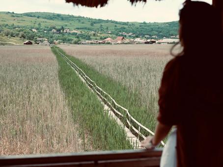 Poduri peste calea singurătății