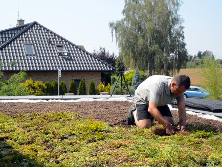 Lehká zelená střecha na rodinném domě s plochou střechou. Jak na ni?