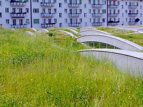 Zelená-Střecha_Selník.png