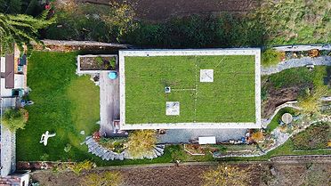 Zelená střecha Brno
