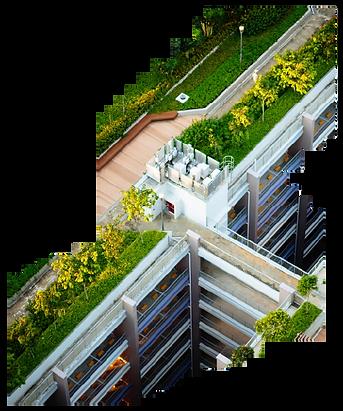 zelené střechy.png