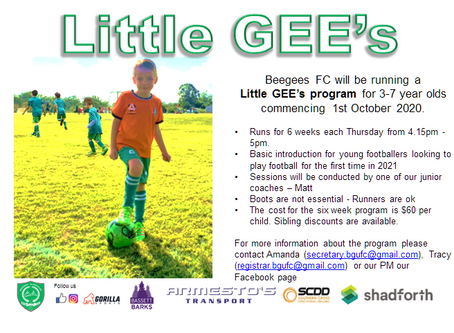 LITTLE Gee's training program