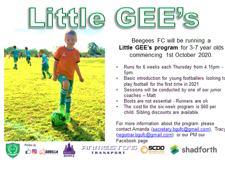 LITTLE Gee's training program